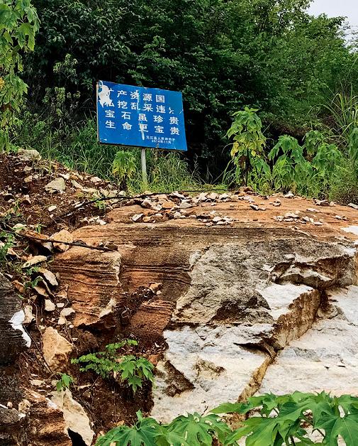 元江人民政府为防止乱采设置的警示牌