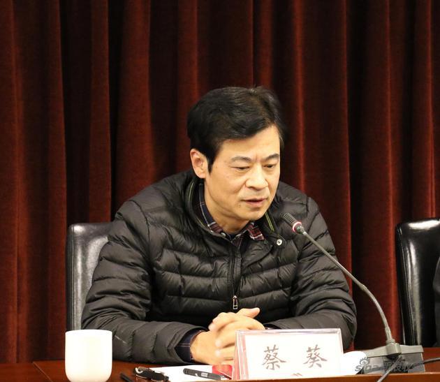 中国艺术研究院国画院人物工作室主任蔡葵