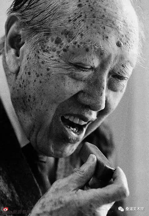 赵少昂(1905~1998)