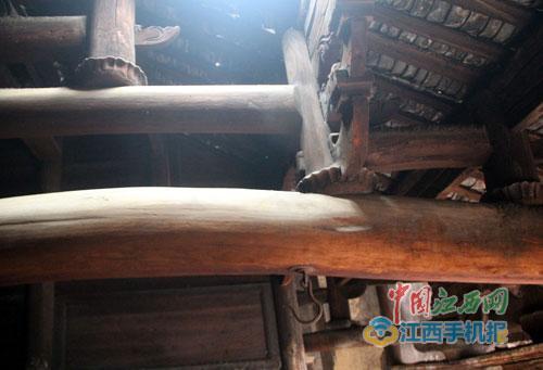江西宜丰发现金丝楠木老屋 70余根梁柱重近40吨