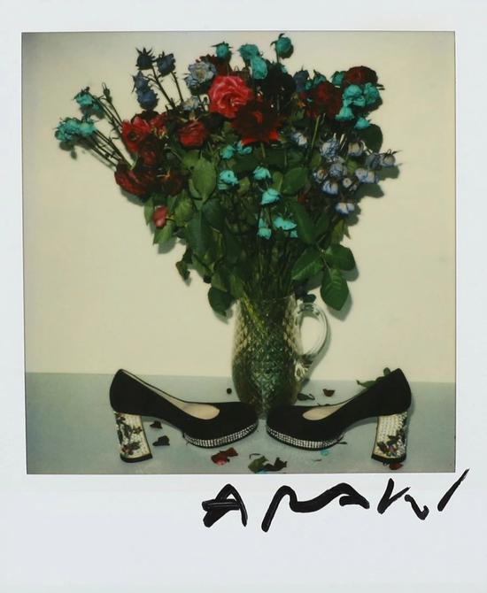 荒木经惟(b.1940) 玫瑰与高跟鞋   宝丽莱