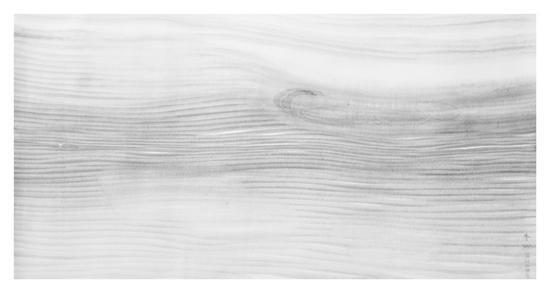 春缈图 69x135cm 2011