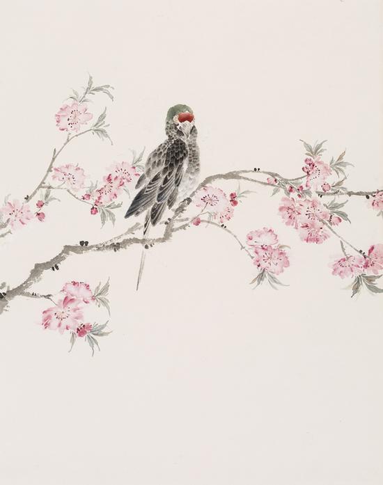 石茹,桃花鹦鹉,纸本设色,57x44cm,2017