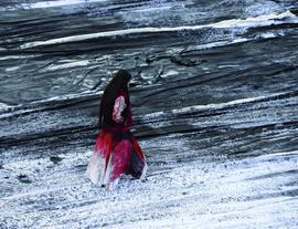 不可能的仙山:冰逸个展