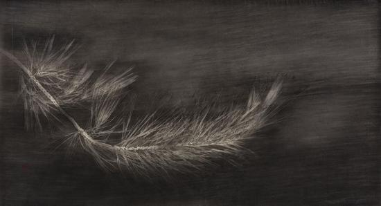 马俊,晨光微透,26cm×48cm,绢本水墨,2017年