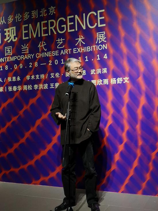 北京太和艺术空间董事长、策展人 贾廷峰 发言