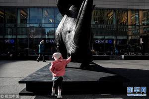 纽约曼哈顿街头揭幕犀牛雕塑 呼吁保护濒危动物