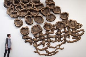 枯木——化腐朽为神奇的力量