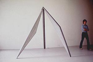 Christopher Georgesco的雕塑艺术!