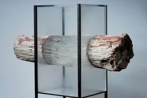 惊人的生物质结合机玻璃雕塑,超震撼!