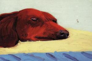 从毕加索到霍克尼 腊肠犬缘何成为艺术家的缪斯