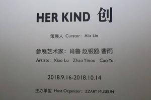 """""""HER KIND创"""":不同时代女性艺术家的个人表达"""