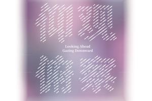【新浪当代】仰观俯察:2018国际艺术与设计邀请展
