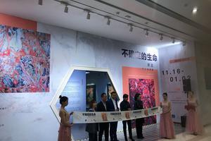 """谭恩个展""""不确定的生命""""11月16日开幕"""