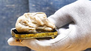 世界最大淡水珍珠以240万成交