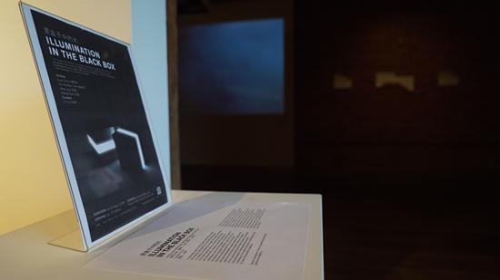 """策展人林梓通过将展览空间设置成黑暗的场域,改变了传统""""白盒子""""式的展示空间,并借此增加了主题的深度。图片致谢Novado Gallery"""