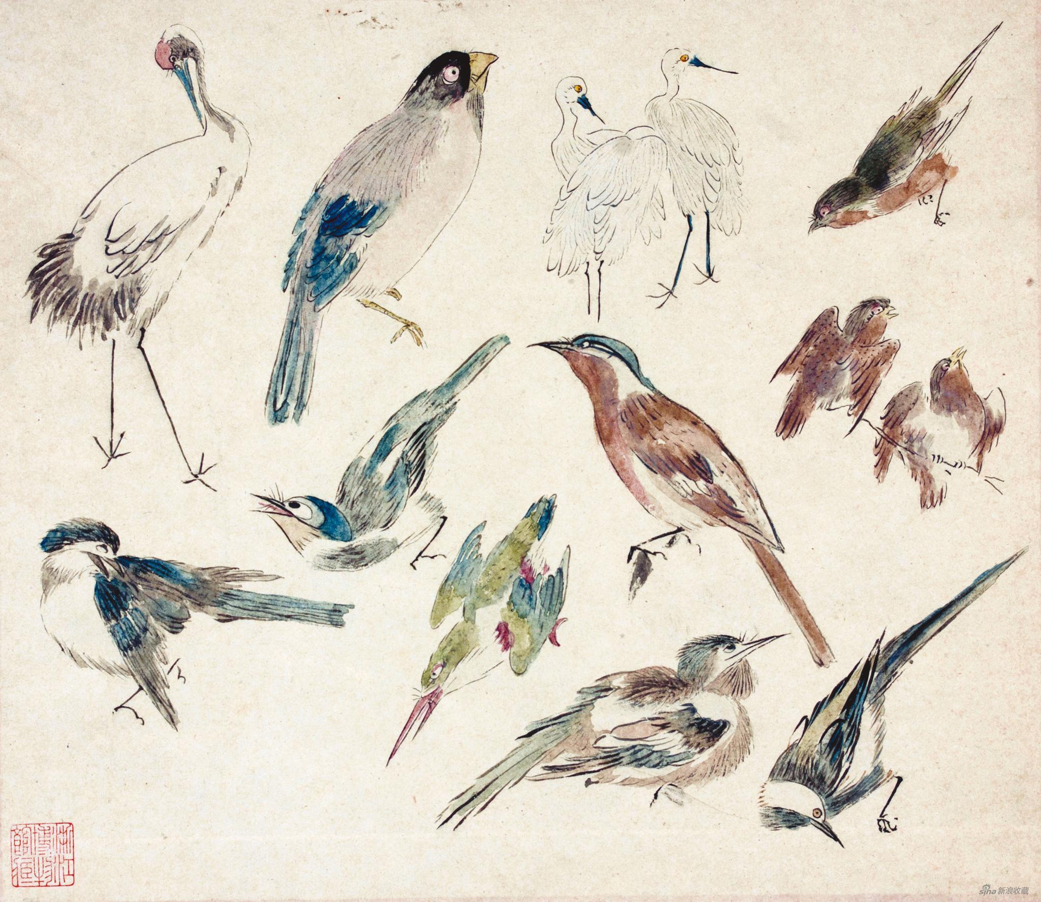禽鸟稿 黄宾虹 26.5cm×30.5cm 无年款 纸本设色 浙江省博物馆藏