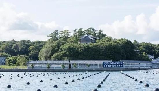 Mikimoto在日本的Akoya珍珠养殖基地