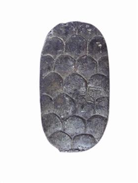 图1龟形银币(正)