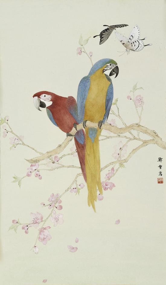 韩雪,鹦鹉,纸本设色,64x36cm,2018