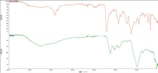 图4 疑似拼合部位和横截面处红外光谱
