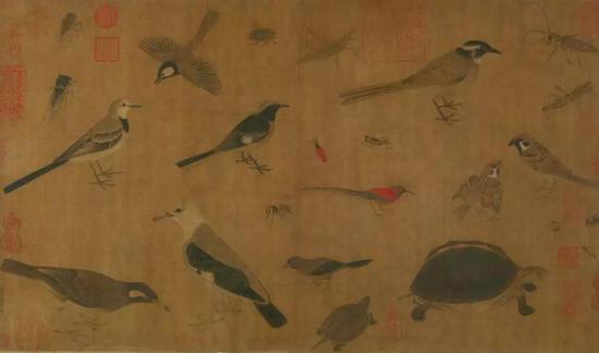 (图5) 五代 黄筌 写生珍禽图