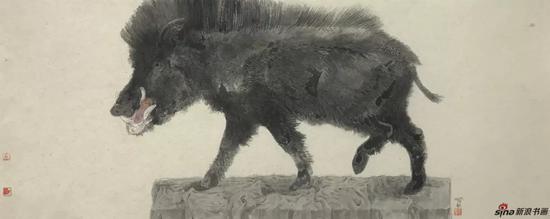 野猪 设色纸本 40×100cm