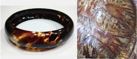 玳瑁壳浑然天成的纹理,不需加工即能突显本身的美