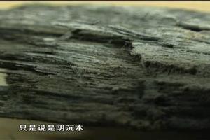 工地挖出大宝贝金丝楠:疑似上千年 闻起来很香