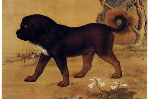"""""""吸狗""""也是中国古代皇家的乐趣"""