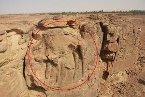沙特阿拉伯沙漠中惊现骆驼雕塑 已存在2千年