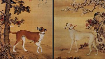 郎世宁画笔下的中国猎犬
