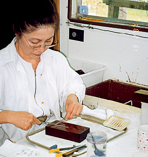 在古柏林博士 1987 年的拜访期间,谢茜向来访者展示了如何切割外套膜组织,以便用于养殖。 照片由 爱德华·J。·古柏林藏品(Edward J。 Gübelin Collection)提供。