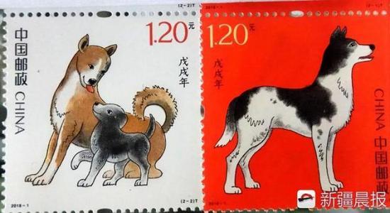 今年发行的生肖狗邮票
