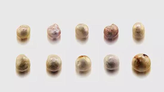 样品中的十粒未钻孔的天然珍珠,尺寸为6.65×6.50×5.10mm到8.20×7.84×5.92mm。