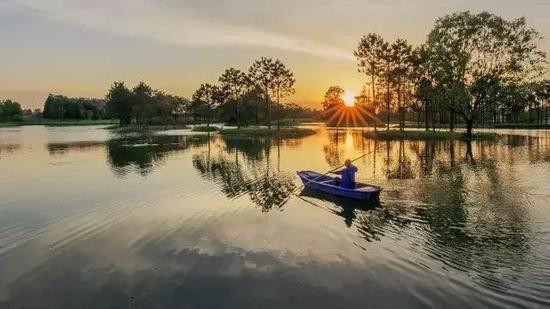 乌镇达园湿地公园