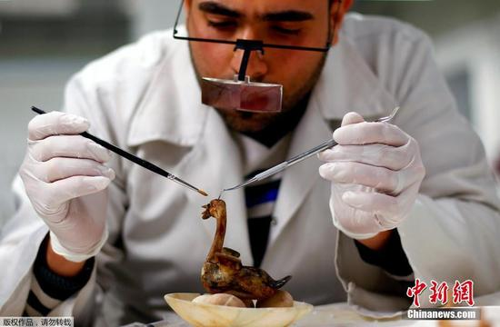 """技术人员正在小心翼翼的修复一只""""卧在蛋上的天鹅"""""""