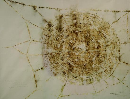 蔡国强Cai Guoqiang 蜘蛛网为大英博物馆做的计画 Drawing for Spider web-300cmx400cmx0cm 纸面火药粉 2004