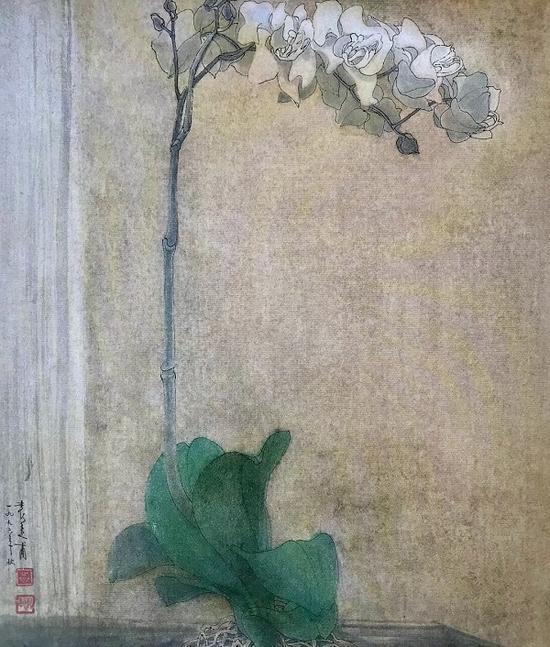 《蝴蝶兰》 袁运甫 1996年