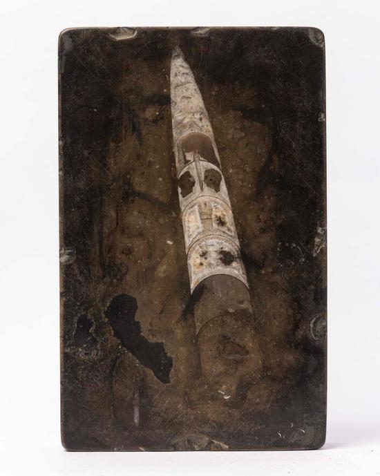 震旦纪角石砚(汤贻汾曾用砚·(清)25.7x16.2x4.8cm
