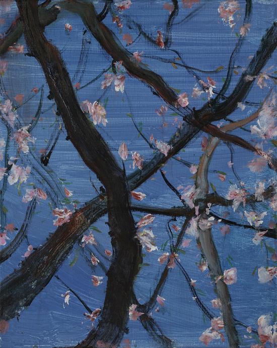 杨勇 花系列之二 布面油画-40X50cm