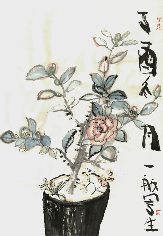 《写生1--茶花》隋-牟-纸本彩墨-40.5cmX59