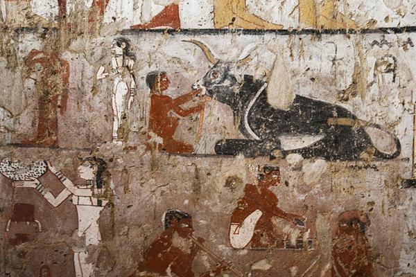 埃及发掘一座4400年前古墓 内现罕见猴舞壁画