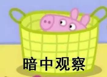 很多妹子都宣布要做个像佩奇一样精致的猪猪人的图片穷苦搞笑图片