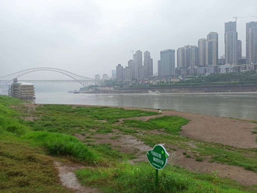 未来三天四川盆地有大到暴雨 局地大暴雨