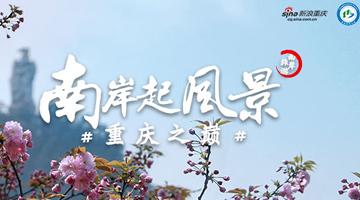 春季踏青 我在#重庆之巅#南山等你