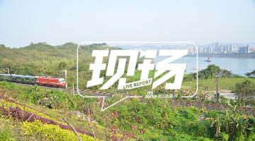 滨江路上就能看到的春日列车