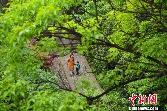图为一母子俩经过山林步道。 陈超 摄