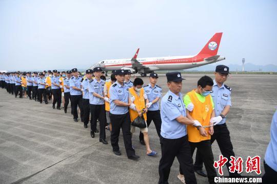 图为警方从柬埔寨将犯罪嫌疑人押解回重庆。 陈超 摄