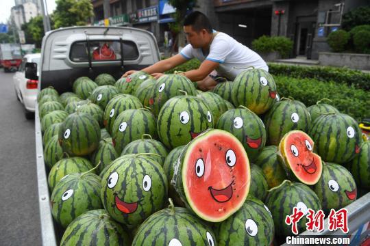 △商贩正在整理车上的西瓜